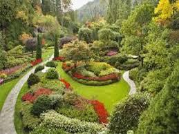 Ecco 5 consigli pratici per diventare giardiniere