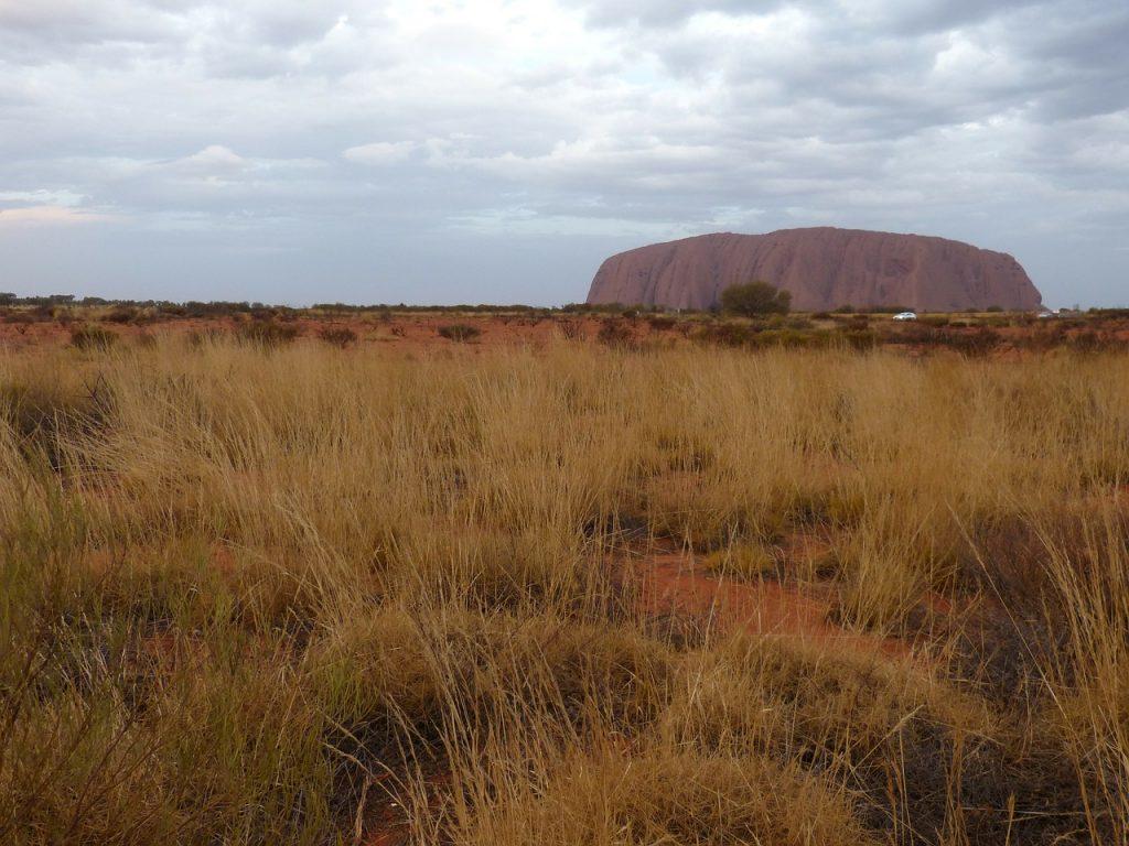 Die Ureinwohner Australiens